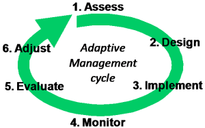 Adaptive Management cycle