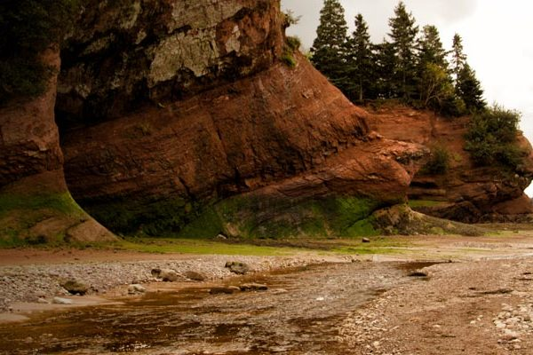 ESSA_Project_Bay_of_Fundy